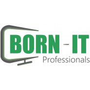 BORN-IT Professionals
